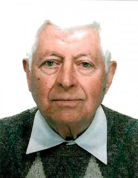 Dino Valli